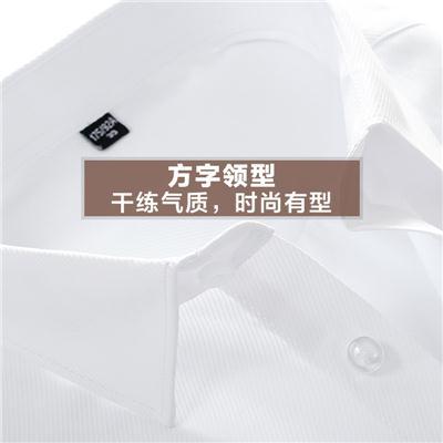 夏季白色衬衫男短袖修身韩版青年职业半袖薄款寸衫商务男装白衬衣
